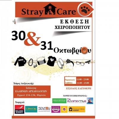 stray_01